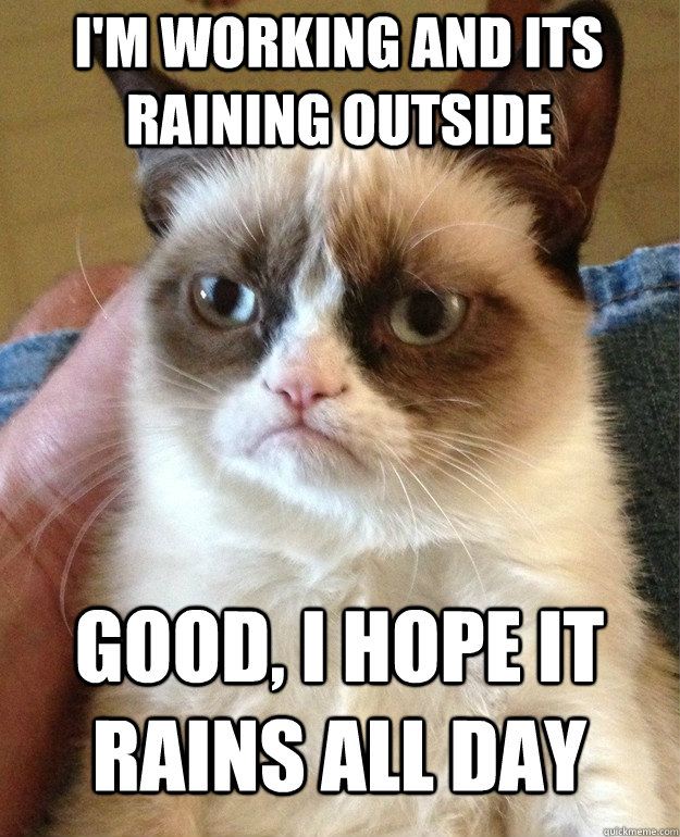 im working and its raining outside good i hope it rains al - Grumpy Cat