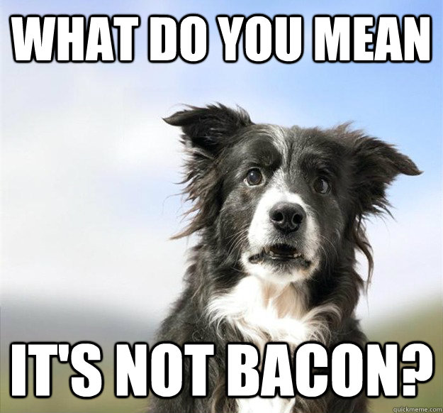 what do you mean its not bacon -