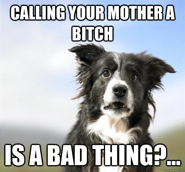 calling your mother a bitch is a bad thing -