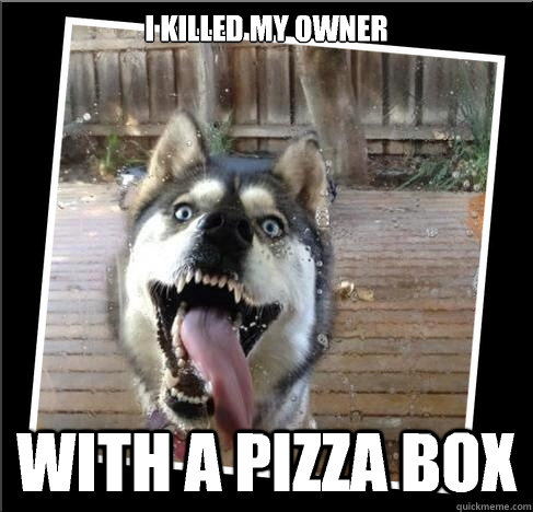 i killed my owner with a pizza box - Domestic Insanity Wolf