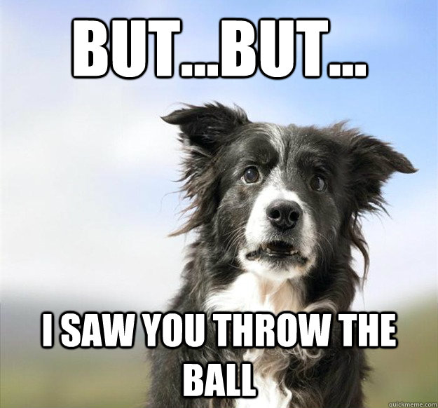 butbut i saw you throw the ball -