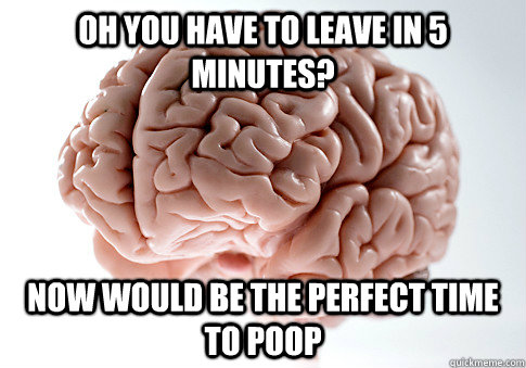oh you have to leave in 5 minutes now would be the perfect  - Scumbag Brain