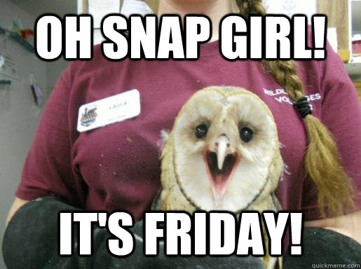 oh snap girl its friday -