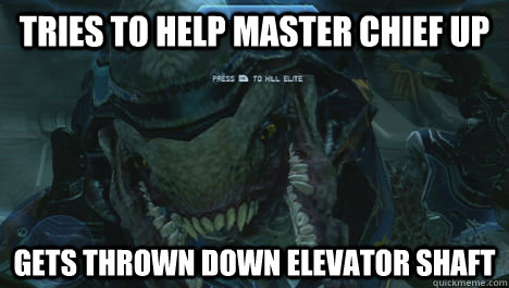 tries to help master chief up gets thrown down elevator shaf - Misunderstood Elite