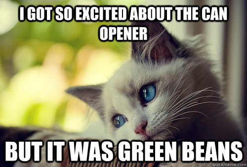 i got so excited about the can opener but it was green beans - First World Cat Problems