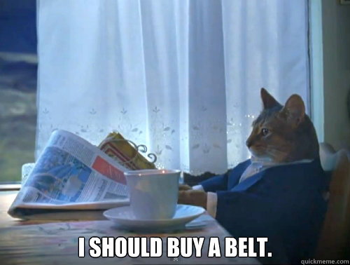 i should buy a belt - The One Percent Cat