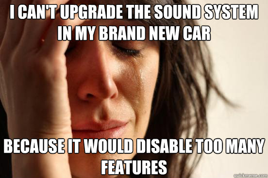 i cant upgrade the sound system in my brand new car because - First World Problems