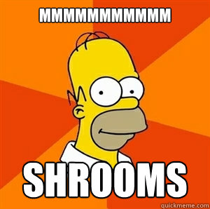 mmmmmmmmmmm shrooms - Advice Homer