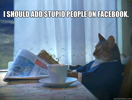 i should add stupid people on facebook  - The One Percent Cat