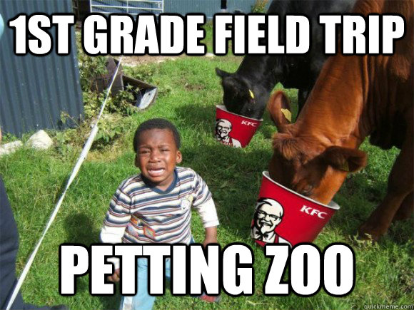 1st grade field trip petting zoo - 