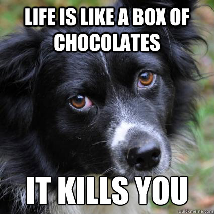 life is like a box of chocolates it kills you -