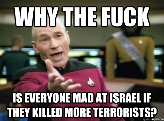 why the fuck is everyone mad at israel if they killed more t - Annoyed Picard HD