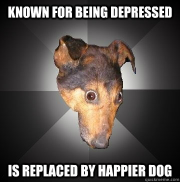 known for being depressed is replaced by happier dog - Depression Dog