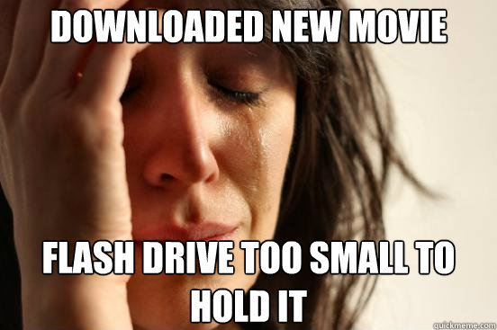 downloaded new movie flash drive too small to hold it - First World Problems