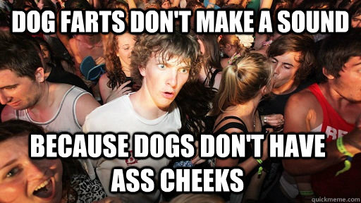 dog farts dont make a sound because dogs dont have ass che - Sudden Clarity Clarence