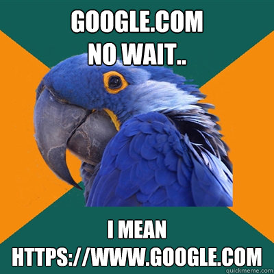 googlecom no wait i mean httpswwwgooglecom - Paranoid Parrot