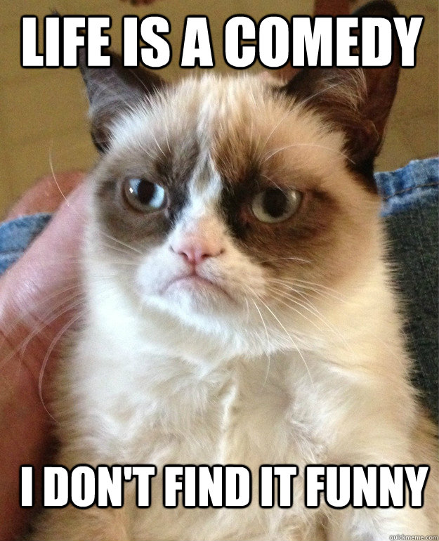 life is a comedy i dont find it funny - Grumpy Cat