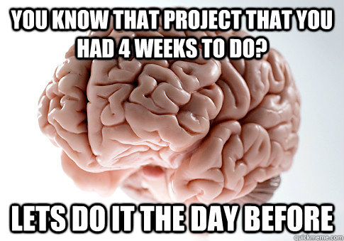 you know that project that you had 4 weeks to do lets do it - Scumbag Brain