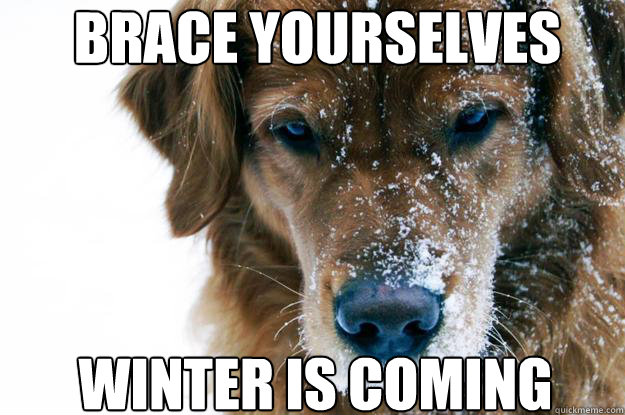 brace yourselves winter is coming - direwolf