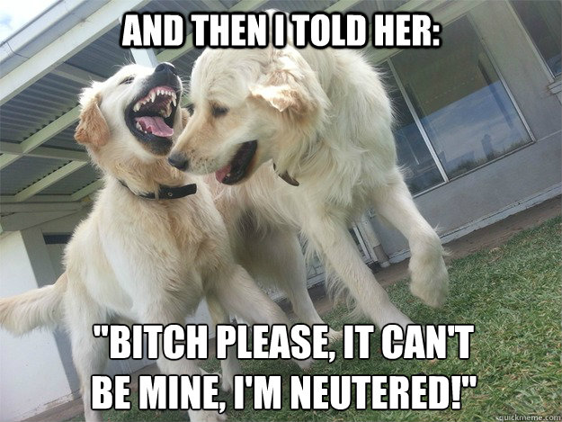 and then i told her bitch please it cant be mine im n - Golden Joke Goldens