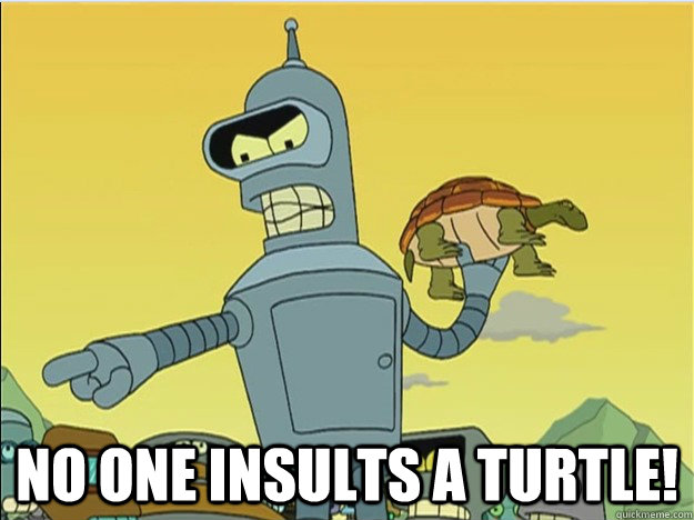 no one insults a turtle -