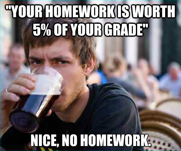 your homework is worth 5 of your grade nice no homework - Lazy College Senior