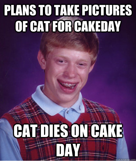 plans to take pictures of cat for cakeday cat dies on cake d - Bad Luck Brian