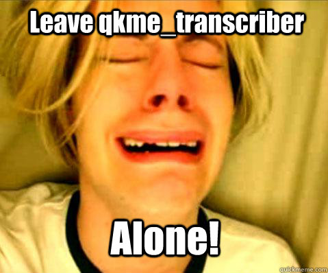 leave qkmetranscriber alone -