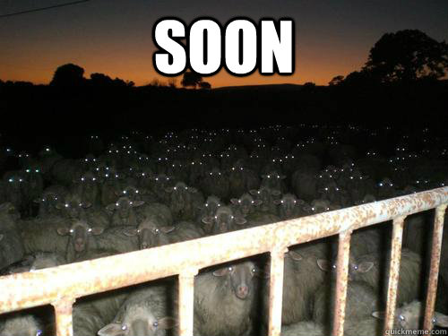 soon  - sheep of death