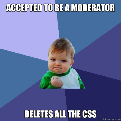 accepted to be a moderator deletes all the css - Success Kid