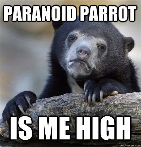 paranoid parrot is me high - Confession Bear
