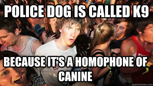 police dog is called k9 because its a homophone of canine - Sudden Clarity Clarence