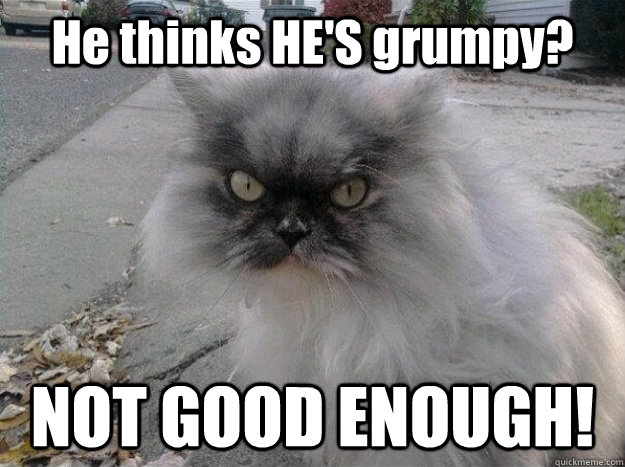 he thinks hes grumpy not good enough - New Grumpy Cat