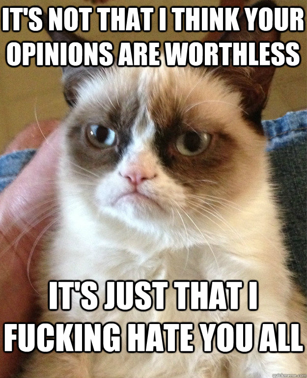its not that i think your opinions are worthless its just  - Grumpy Cat