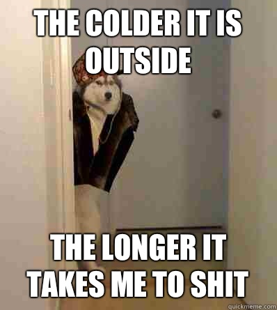 The colder it is outside The longer it takes me to shit - Scumbag dog