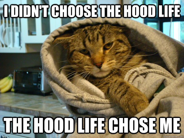 i didnt choose the hood life the hood life chose me - Hood Cat
