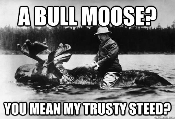 a bull moose you mean my trusty steed -