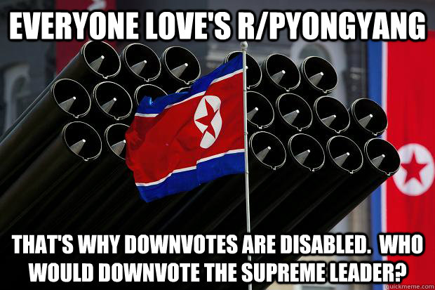 everyone loves rpyongyang thats why downvotes are disable - Scumbag North Korea