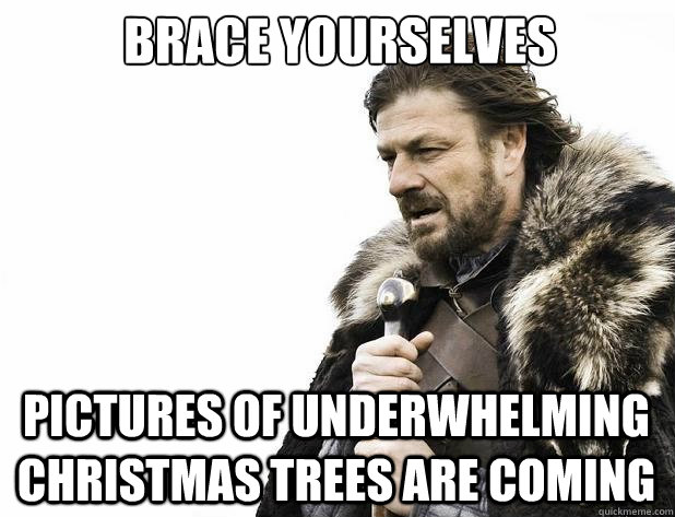 brace yourselves pictures of underwhelming christmas trees a - Brace Yourself