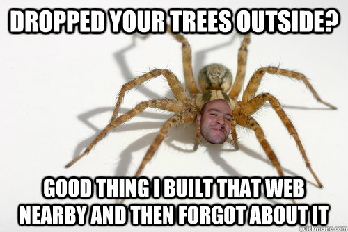 dropped your trees outside good thing i built that web near - Good guy spider