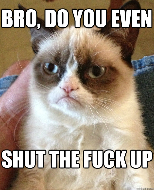 bro do you even shut the fuck up - Grumpy Cat