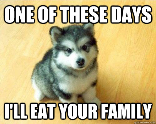 Related pictures insanity wolf advice animal meme button