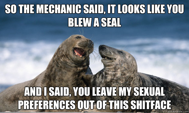so the mechanic said it looks like you blew a seal and i sa - Comedian Seal