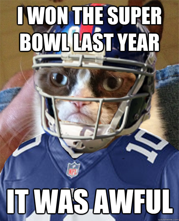 i won the super bowl last year it was awful - Eli-Tard