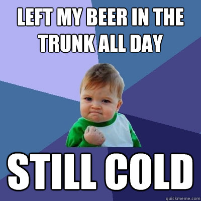 left my beer in the trunk all day still cold - Success Kid