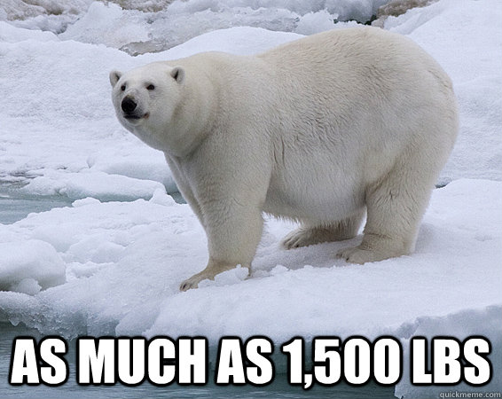 as much as 1500 lbs - 