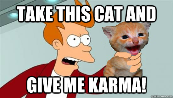 take this cat and give me karma - GIVE ME KARMA!