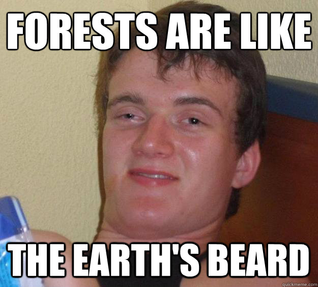 forests are like the earths beard - 10 Guy