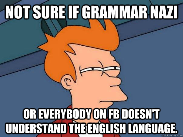 not sure if grammar nazi or everybody on fb doesnt understa - Futurama Fry