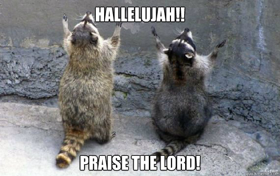 Thank the Lord - praise the lord cat | Meme Generator |Thank The Lord Meme